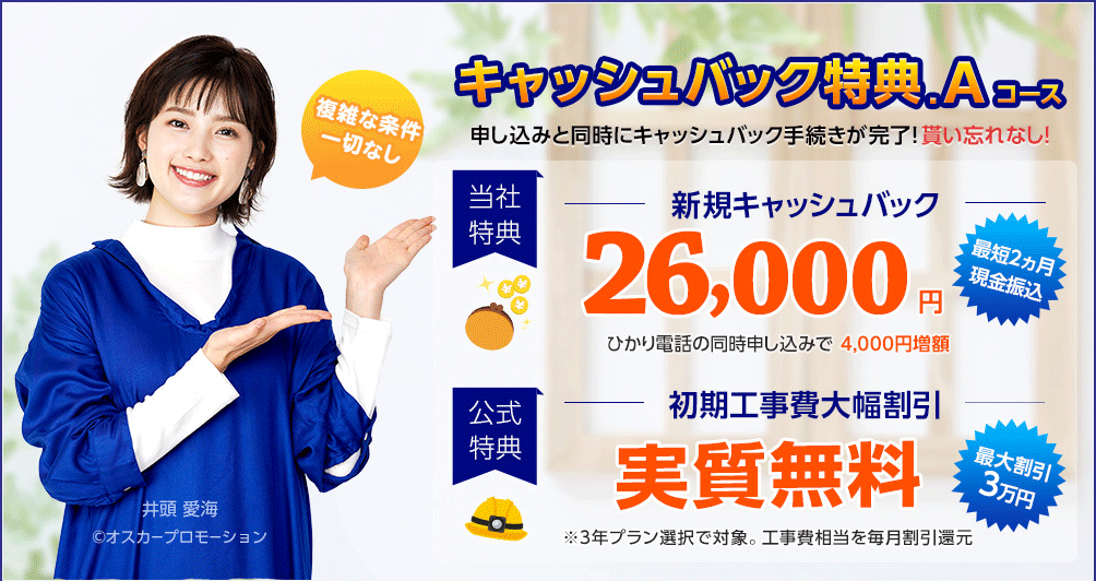 ビッグローブ光 代理店「株式会社NNコミュニケーションズ」特典A